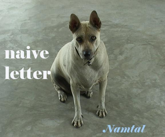 5.naive letter copy